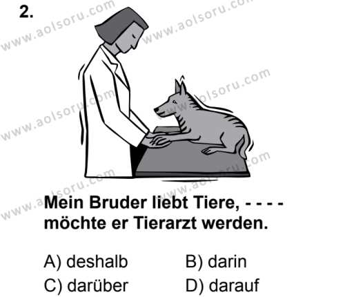 Almanca 6 Dersi 2019 - 2020 Yılı 2. Dönem Sınav Soruları 2. Soru