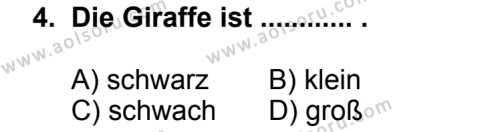 Almanca 7 Dersi 2013 - 2014 Yılı 3. Dönem Sınav Soruları 4. Soru