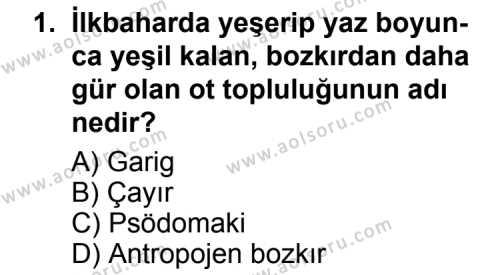 Coğrafya 4 Dersi 2013 - 2014 Yılı 2. Dönem Sınavı 1. Soru