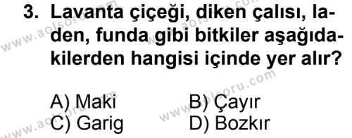 Coğrafya 4 Dersi 2013 - 2014 Yılı 3. Dönem Sınav Soruları 3. Soru