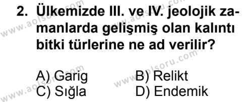 Coğrafya 4 Dersi 2014 - 2015 Yılı 2. Dönem Sınavı 2. Soru