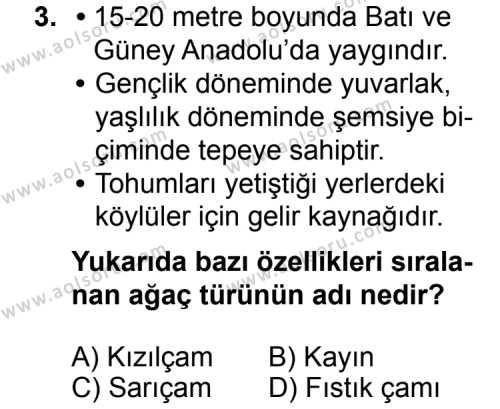 Coğrafya 4 Dersi 2014 - 2015 Yılı 2. Dönem Sınav Soruları 3. Soru