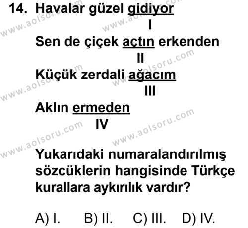 Dil ve Anlatım 1 Dersi 2014-2015 Yılı 1. Dönem Sınavı 14. Soru