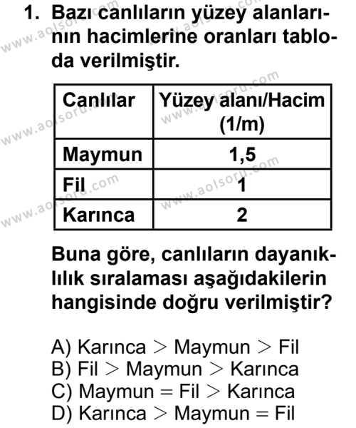 Fizik 3 Dersi 2013 - 2014 Yılı 3. Dönem Sınavı 1. Soru