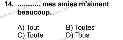 Fransızca 1 Dersi 2013-2014 Yılı 1. Dönem Sınavı 14. Soru