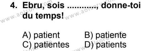 Fransızca 7 Dersi 2013 - 2014 Yılı 3. Dönem Sınav Soruları 4. Soru