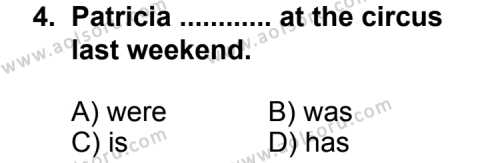 İngilizce 6 Dersi 2012 - 2013 Yılı 2. Dönem Sınavı 4. Soru