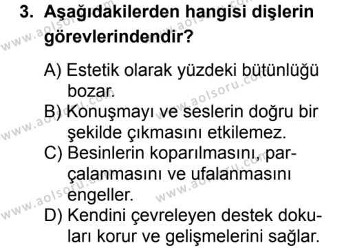 Sağlık Bilgisi ve Trafik Kültürü 1 Dersi 2018 - 2019 Yılı 3. Dönem Sınavı 3. Soru
