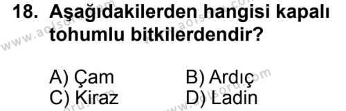 Seçmeli Biyoloji 1 Dersi 2013-2014 Yılı 1. Dönem Sınavı 18. Soru