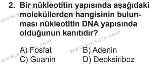 Seçmeli Biyoloji 3 Dersi 2018 - 2019 Yılı 2. Dönem Sınavı 2. Soru