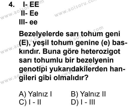 Seçmeli Biyoloji 4 Dersi 2011 - 2012 Yılı 1. Dönem Sınavı 4. Soru