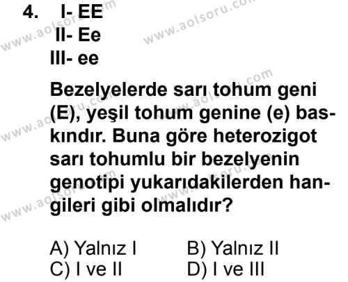 Seçmeli Biyoloji 4 Dersi 2011 - 2012 Yılı Ek Sınavı 4. Soru