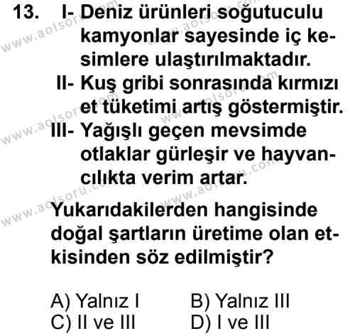 Seçmeli Coğrafya 1 Dersi 2014-2015 Yılı 1. Dönem Sınavı 13. Soru