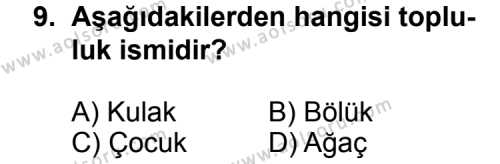 Seçmeli Dil ve Anlatım 4 Dersi 2013-2014 Yılı 1. Dönem Sınavı 9. Soru