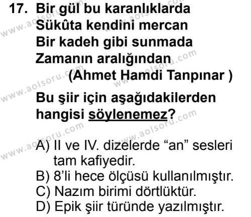 Seçmeli Dil ve Anlatım 8 Dersi 2012-2013 Yılı 1. Dönem Sınavı 17. Soru