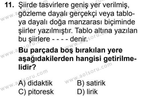 Seçmeli Türk Dili ve Edebiyatı 1 Dersi 2018-2019 Yılı 1. Dönem Sınavı 11. Soru