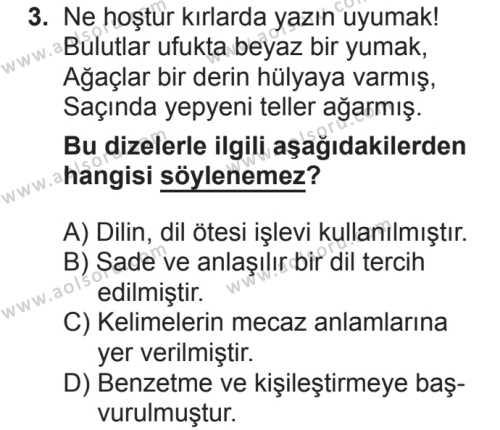 Seçmeli Türk Dili ve Edebiyatı 1 Dersi 2018 - 2019 Yılı 2. Dönem Sınavı 3. Soru