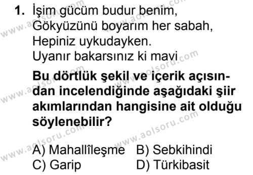 Seçmeli Türk Dili ve Edebiyatı 1 Dersi 2018 - 2019 Yılı 3. Dönem Sınavı 1. Soru