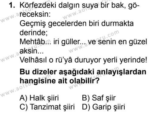 Seçmeli Türk Dili ve Edebiyatı 1 Dersi 2018 - 2019 Yılı Ek Sınavı 1. Soru