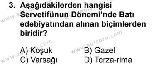 Seçmeli Türk Dili ve Edebiyatı 1 Dersi 2018 - 2019 Yılı Ek Sınavı 3. Soru