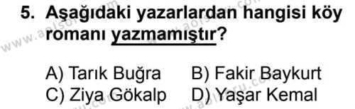 Seçmeli Türk Dili ve Edebiyatı 2 Dersi 2018-2019 Yılı 1. Dönem Sınavı 5. Soru