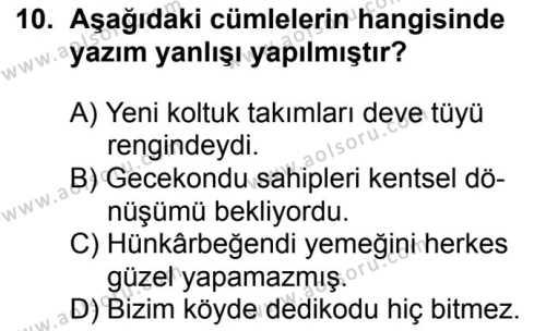 Seçmeli Türk Dili ve Edebiyatı 2 Dersi 2018-2019 Yılı 1. Dönem Sınavı 10. Soru