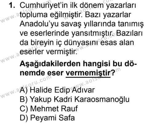Seçmeli Türk Dili ve Edebiyatı 2 Dersi 2018 - 2019 Yılı Ek Sınavı 1. Soru