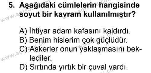 Seçmeli Türk Dili ve Edebiyatı 3 Dersi 2018-2019 Yılı 1. Dönem Sınavı 5. Soru