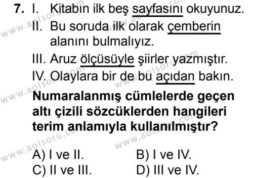 Seçmeli Türk Dili ve Edebiyatı 3 Dersi 2018-2019 Yılı 1. Dönem Sınavı 7. Soru