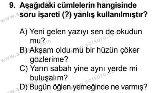 Seçmeli Türk Dili ve Edebiyatı 3 Dersi 2018-2019 Yılı 1. Dönem Sınavı 9. Soru