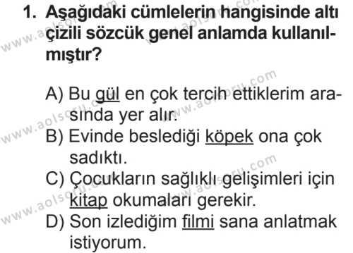 Seçmeli Türk Dili ve Edebiyatı 3 Dersi 2018 - 2019 Yılı 2. Dönem Sınavı 1. Soru