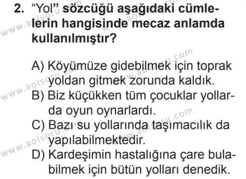 Seçmeli Türk Dili ve Edebiyatı 3 Dersi 2018 - 2019 Yılı 2. Dönem Sınavı 2. Soru