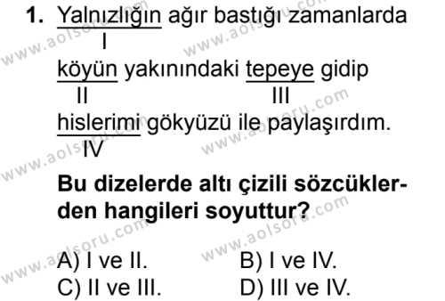 Seçmeli Türk Dili ve Edebiyatı 3 Dersi 2018 - 2019 Yılı 3. Dönem Sınavı 1. Soru