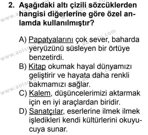 Seçmeli Türk Dili ve Edebiyatı 3 Dersi 2018 - 2019 Yılı 3. Dönem Sınavı 2. Soru