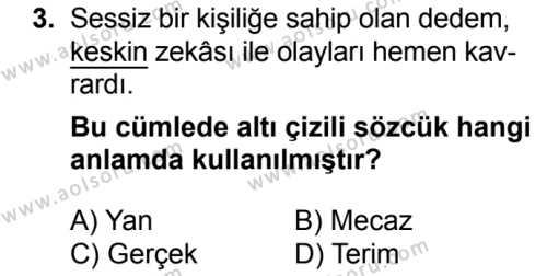 Seçmeli Türk Dili ve Edebiyatı 3 Dersi 2018 - 2019 Yılı 3. Dönem Sınavı 3. Soru