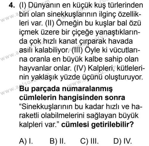 Seçmeli Türk Dili ve Edebiyatı 3 Dersi 2018 - 2019 Yılı 3. Dönem Sınavı 4. Soru