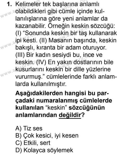 Seçmeli Türk Dili ve Edebiyatı 3 Dersi 2018 - 2019 Yılı Ek Sınav Soruları 1. Soru