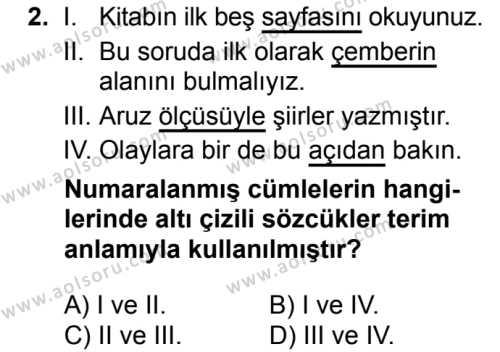 Seçmeli Türk Dili ve Edebiyatı 3 Dersi 2018 - 2019 Yılı Ek Sınav Soruları 2. Soru