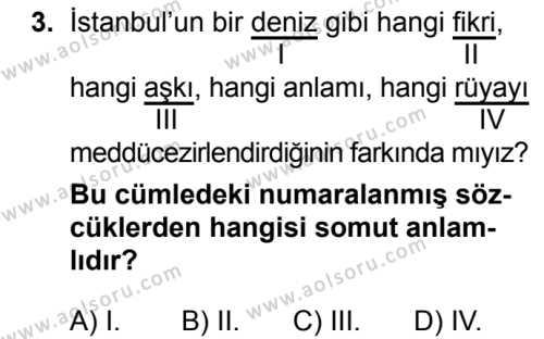 Seçmeli Türk Dili ve Edebiyatı 3 Dersi 2018 - 2019 Yılı Ek Sınav Soruları 3. Soru