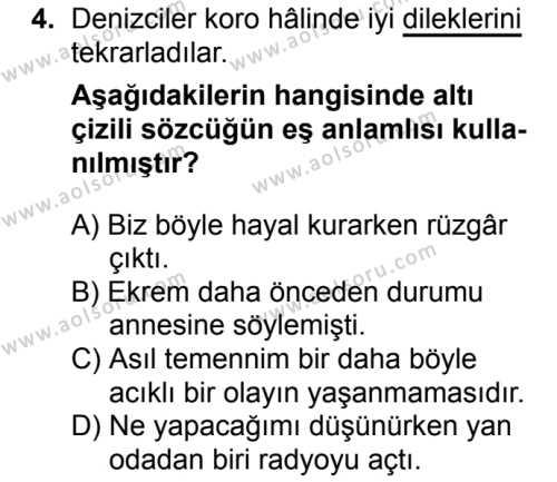 Seçmeli Türk Dili ve Edebiyatı 3 Dersi 2018 - 2019 Yılı Ek Sınav Soruları 4. Soru