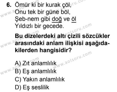 Seçmeli Türk Dili ve Edebiyatı 3 Dersi 2019-2020 Yılı 1. Dönem Sınavı 6. Soru