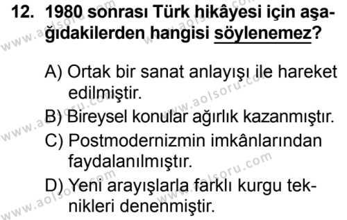 Seçmeli Türk Dili ve Edebiyatı 3 Dersi 2019-2020 Yılı 1. Dönem Sınavı 12. Soru