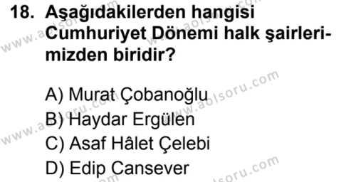 Seçmeli Türk Dili ve Edebiyatı 3 Dersi 2019-2020 Yılı 1. Dönem Sınavı 18. Soru
