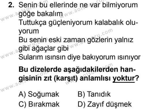 Seçmeli Türk Dili ve Edebiyatı 3 Dersi 2019 - 2020 Yılı 2. Dönem Sınav Soruları 2. Soru