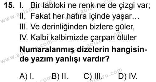 Seçmeli Türk Dili ve Edebiyatı 4 Dersi 2019-2020 Yılı 1. Dönem Sınavı 15. Soru