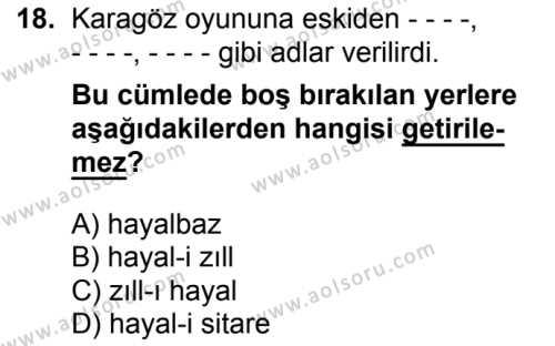 Seçmeli Türk Edebiyatı 4 Dersi 2016-2017 Yılı 1. Dönem Sınavı 18. Soru