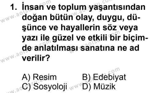 Seçmeli Türk Edebiyatı 5 Dersi 2011 - 2012 Yılı Ek Sınavı 1. Soru