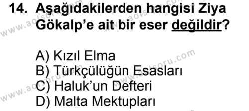 Seçmeli Türk Edebiyatı 6 Dersi 2012-2013 Yılı 1. Dönem Sınavı 14. Soru