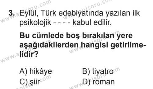 Seçmeli Türk Edebiyatı 6 Dersi 2017 - 2018 Yılı 3. Dönem Sınavı 3. Soru