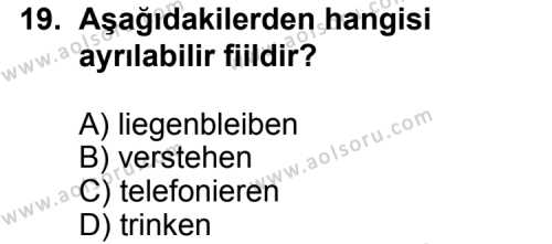 Seçmeli Yabancı Dil Almanca 3 Dersi 2013-2014 Yılı 1. Dönem Sınavı 19. Soru